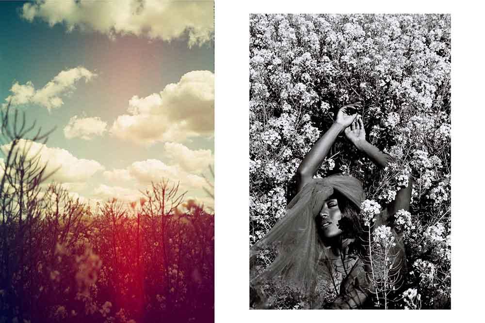 """""""awakening of the sun"""" purple haze magazin"""""""